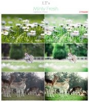 Minty Fresh LIGHTROOM Preset by Lady-Tori