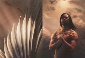 The Weight of Birds by wroth
