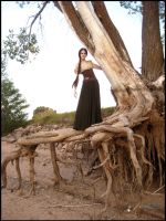 Me on the Tallroot Tree 1 by aelthwyn