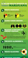 Facts About Medical Marijuana by mediorg