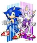 Sonic and Blaze - Ready for Round Three by BroDogz