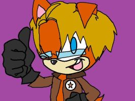 Sonic Hetalia (America) by pussinboots50