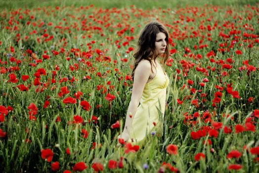 lost in poppies by patrycjanna