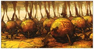 The Pumpkin Patch by bluefish3d