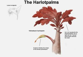 REP: The Harlotpalms by Ramul