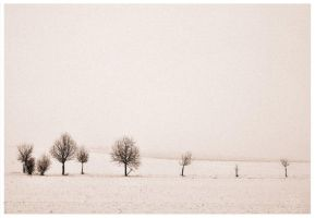 Tristesse by Wundenkuessen