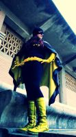 Let's Fight Crime! by LeriCat