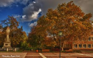 The morning of October. HDR- picture. by magyarilaszlo
