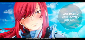 Fairy Tail 434 - Erza You really Strong by IchigoVizard96
