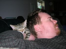 Hubby and Kitten Sleeping by froggieg