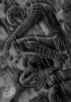 Spiderman by N3ttan