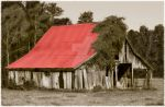 Red Roof Dilapidated Barn by estjohn
