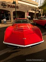 Red LT1 Vette by Swanee3