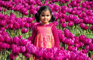 Babe Among The Tulips III by Photos-By-Michelle