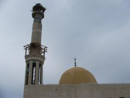 Israel destroyed 41 Mosques by ademmm
