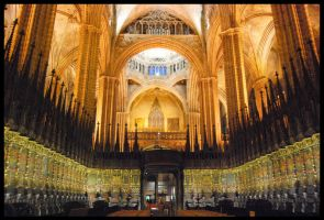 Barcelona Cathedral I by 250981