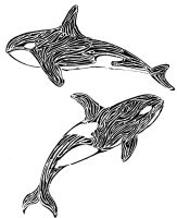 Killers Whales by themaskgallery