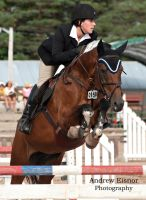 Show Jumping by AEisnor