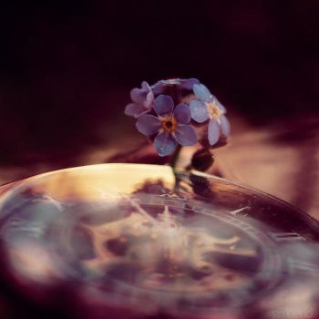 forget-me-not clock. by simoendli