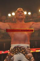 Raw after WM25 66 by boomboom316