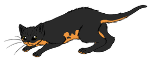 ShadowClan - Newtspeck by WildpathOfShadowClan