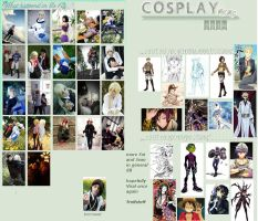 Cosplay meme 2013/2014 by NorFrosch