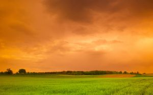 The Calm before the Storm by kkeman