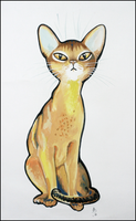 abyssinian cat by Sashe4ka