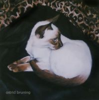 A Young Jezebel - PASTEL WORK by AstridBruning