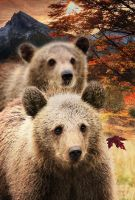 Brother Bear Detail 3 by amethystmstock