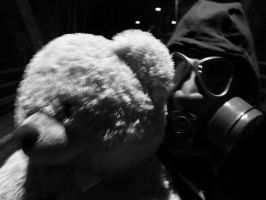 Teddy Titanic and The Bohemian countryside Hero by DistortedEchoes