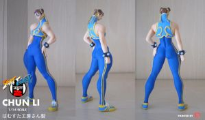 CHUN LI 1/14 RESIN KIT by rgm501