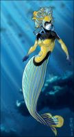 Angelfish by aiwa
