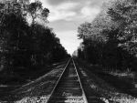 Rails (BW) by DegreeInfinite