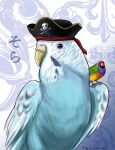 Sky the Budgie Pirate Colored (non-anime) by EmilyCammisa