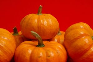 Small Pumpkins Stock II by azieser