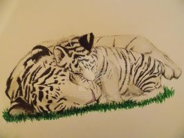 Tiger and cub by Mio299
