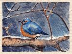 Blue bird on snowy day by ShadowFrau