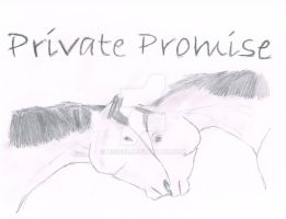 Private Promise by HS3055