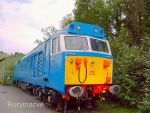 BR 50002 'Superb' at Buckfastleigh by The-Transport-Guild