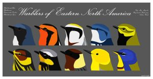 Warblers of Eastern N.A. by glassbitch