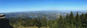 in memorium by lilbittydemon