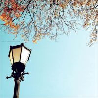 .: autumn lamp :. by all17