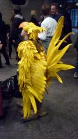Chocobo Girl 2 by ggeudraco