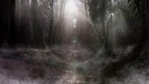Dark Forrest matte 2 by TheArtofSaul