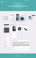 PayStore Web Interfaces by nubpro