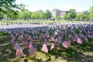 Memorial Day, Sea Of Flags by Miss-Tbones