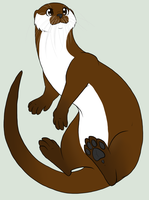 Otter by Dragon-Wolf-Lover