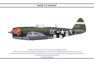 P-47 USAAF 359th FS 1 by WS-Clave