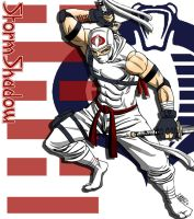 Storm Shadow Colors by Claret821021